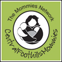 Central Foothills Mommies Asheville summer camps